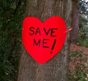 Save Me says Tree