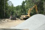 Big Cat Workin' 1